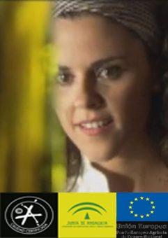 Denominación de origen, Junta de Andalucía